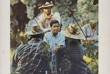 Sept. 15 - Oct. 15 - Hispanic Heritage Month