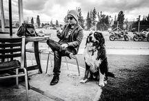 La mascota de Juan / #pastorbernes #bernese #bernesemontaindog #dog #perro #mascota