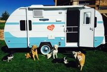 """Meet Special Edition 177, """"Little Orphan Annie"""" / Sisters on the Fly and Riverside RV have partnered to design a custom trailer! The unique """"Annie"""" design offers the reliability and sturdiness available with Retro RV Trailer's work and a lifetime of design and style experience from our founder Maurrie and Becky."""