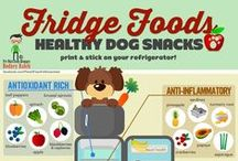 Food Health Tips for Pets