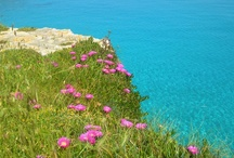 The sea of Salento