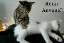 Animal Energy Healing / Animals can participate in energy healing, too!
