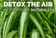 Natural Tips and tricks Garden and Home / Natural tips