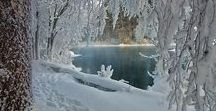 """Winter / """"The color of winter is in the imagination."""""""