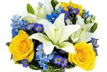 Winter Flowers for Delivery / Winter flowers, delicately hand-arranged, to express your warmest wishes.