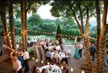 the wedding reception inspiration / Wedding Reception Photos and Decor Inspiration