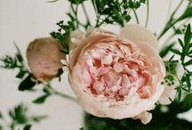 FLOWERS / by Julie Eastlake