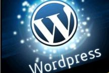 Small Business Web Design / I specialize in Self-hosted WordPress web design and blog design for small businesses. I design websites that are user-friendly, liked by search engines, and relevant to the needs of a target audience. I possess outstanding proficiency in search engine optimization techniques.