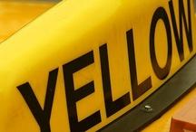 Hello Yellow!  / by Mye Cruz