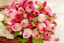 Florals  / Bunches and bouquets