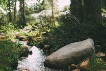 Taknemlighed for naturen  / Naturens tusindevis farver ⭐️