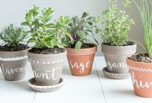 : b o t a n y / Nothing better than bringing a piece of nature into your home, as you nurture it, it nurtures you...