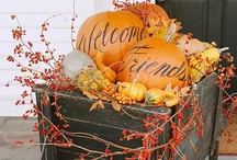 Fall Decorations / by Nicole