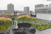 Projects / Projects by Terra Fluxus - Landscape+Urbanism