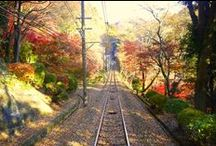 Autumn foliage / The beautiful Autumn colors in Tokyo and the other alliance hotel of Agora