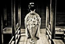Japonica / by Tara Ricker