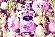 Perfumes & Cute Bottles