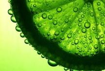 LIME Green / Lime green, the color of life, renewal, nature, and energy, is associated with meanings of growth, harmony, freshness, safety, fertility, and environment.