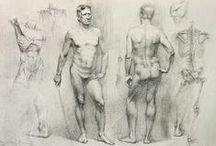 Curso de desenho-Figura Humana / Material referentes a cursos de arte-Figura humana.