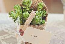 Eco-Friendly GREEN Wedding / eco-friendly wedding ideas, environmentally conscious wedding, #greenwedding