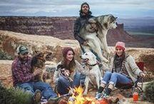 Vacances / Le plaisir de voyager en compagnie de ses animaux adorés