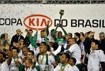 """S. E. Palmeiras / """"Explicar a emoção de ser palmeirense, a um palmeirense, é totalmente desnecessário. E a quem não é palmeirense, é totalmente impossível"""""""