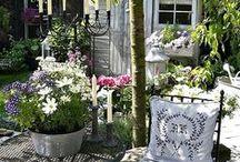 Záhrady / Garden