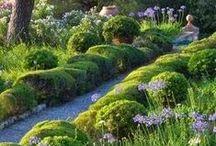 ❧ Garden &  conservatory