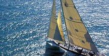 Voiles blanches / Daily limit: 10 pins (in total)