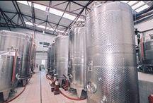 Our Winery - Το οινοποιείο μας / Υπερσύγχρονη οινοποίηση