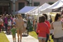 South Louisiana Festivals