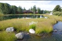 Landscaping / Landscape inspiration from the Tetons and beyond.
