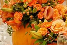 Bloemen-Flowers / Allerlei soorten bloemen