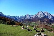 Pyrénées  dans le Béarn / Ses quatre vallées emblématiques, Ossau, Aspe, Ouzom et Barétous offrent le visage le plus authentique et le plus vivant de la montagne telle que vous la rêvez.  Découvrez le patrimoine culturel, naturel et la gastronomie de ce territoire.