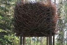 houses trees / case sugl alberi