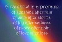 ~ Rainbows ~