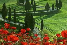 Thing about Tuscany