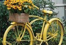 ~ Flower Bikes ~