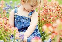 ♡ Peaceful Meadows  ♡