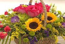 ✿ Flower Baskets ✿