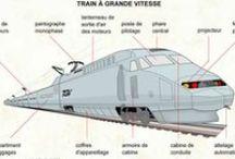FLE: Transport - Train