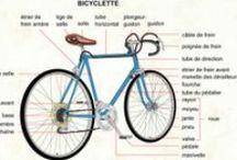 FLE: Transport - Vélo
