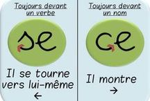FLE: Homophones / by La Frencherie - Mme Devine