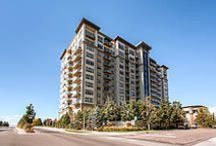 Luxury Hi-Rise Living in Denver - HDReal™ by Virtuance