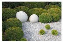 Green gardens / by ruckipucki