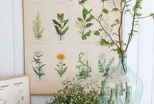 Papeterie - schönes zum Anschauen / Wanddeko, Poster, Bilder. Was gefällt und für gut befunden wird. Schöne Papeterie zum Verschenken