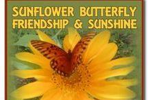 Butterfly Flutterings