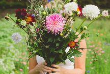 FLOWERS | Flowergarden