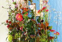 FLOWERS | Arrangements