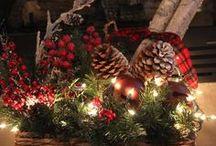 Christmas Pinecones & Poinsetta